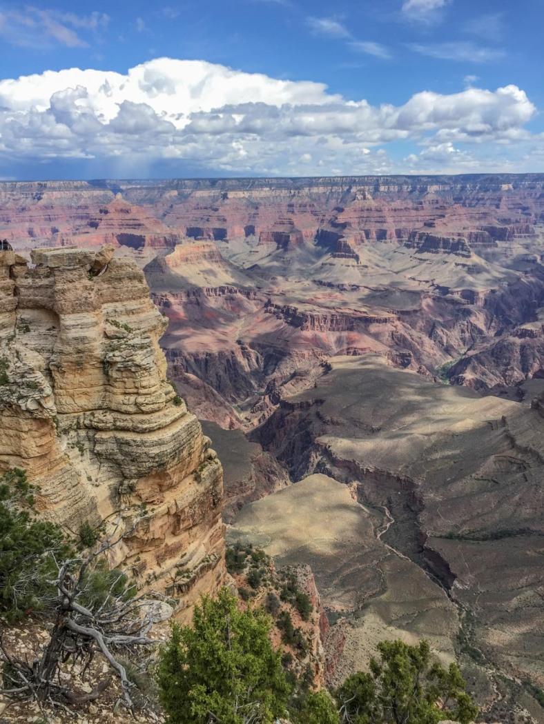 Grand Canyon_293_160517