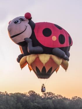 Balloon Festival-7