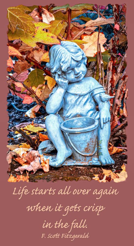 Gardenboycard-2